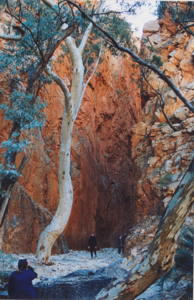 mcdonnell-ranges-Northern-Territory-in-Central-Australia