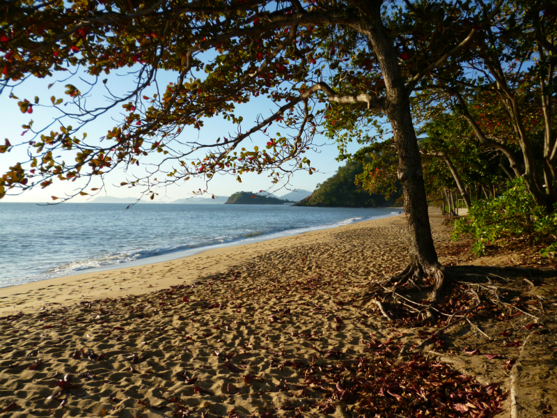 At Trinity Beach near Cairns looking South
