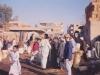 At-Cairo-Camel-market-Egypt