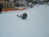 Husband-K-sledding-at-Kranjska-Gora-Slovenia