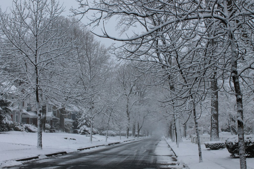 snow-in-march-montclair-new-jersey