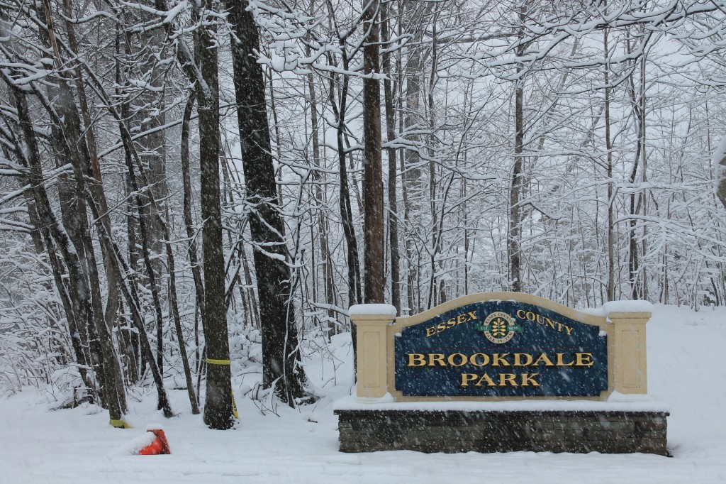 snow-in-brookdale-park-new-jersey