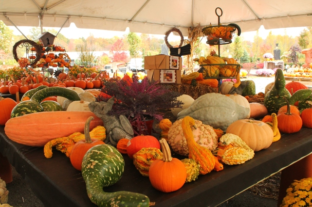 fall-vegetables-NJ