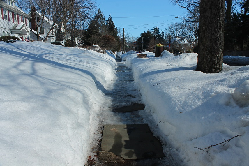 frozen-snow-covered-pathways-winter-nj