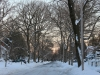winter-in-new-jersey-local-Montclair-streets