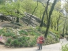 Walking-near-the-south-east-corner-Central-Park-New-York