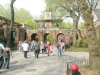 leaving-Central-Park-Zoo-New-York-USA