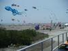 wildwood-NJ-kite-festival-2008-on-memorial-day