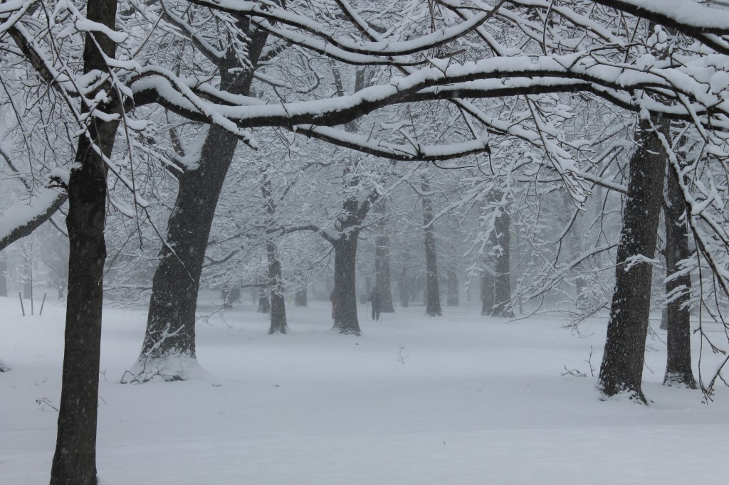 Brookdale-Park-Montclair-NJ