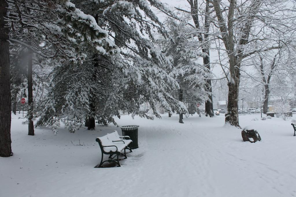 Anderson-Park-in-March-snow-NJ