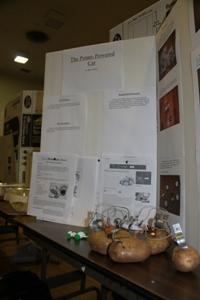 science-fair-potato-battery-demonstration