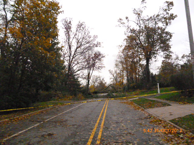 Downed-trees-on-Upper-Mountain-Rd-Montclair-NJ-after-Hurricane-Sandy