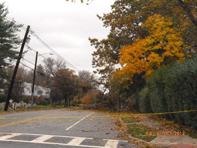 Hurricane-Sandy-damage-in-Essex-County-NJ