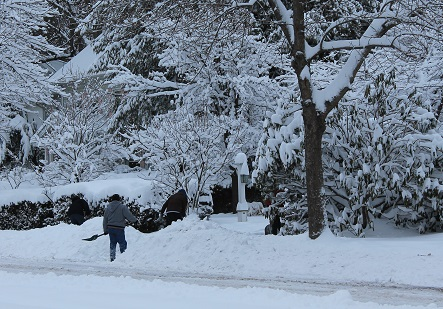 snow-removal-service-providers