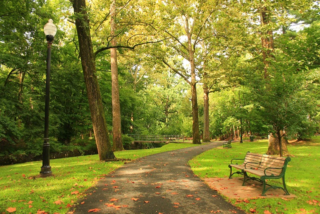 Late-summer-greenery-Grover-Cleveland-Park-Caldwell-NJ