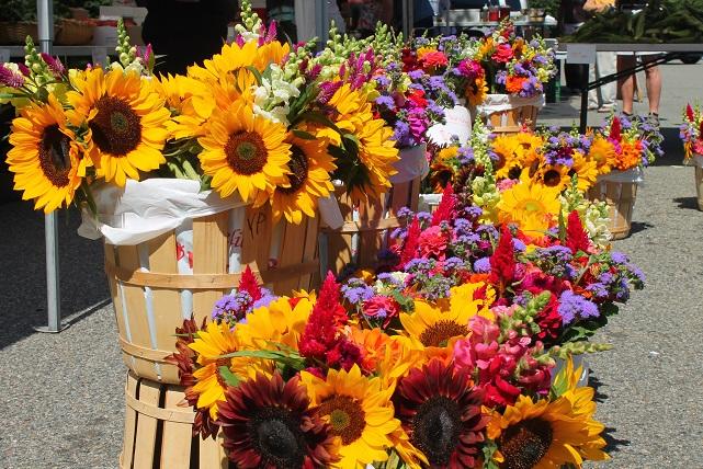 Fresh-flowers-farmers-market=Chatham-NJ