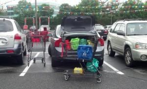 grocery-shopping-trolley-NJ